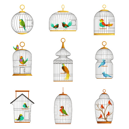 Bird cages with different birds set of vector Illustrations