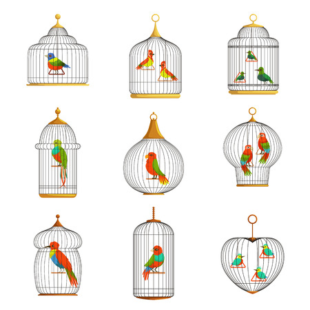 Colorful birds in cages set vector Illustrations