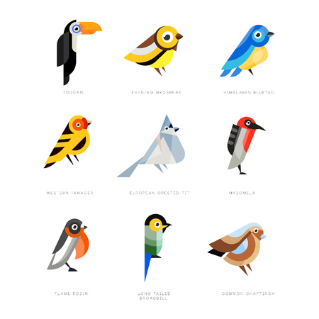 Collection of birds, lilac breasted roller, bullfinch, red bellied pitta, great tit, kingfisher, northern cardinal, bee eater, sparrow, superb fairy vector Illustrations Illusztráció