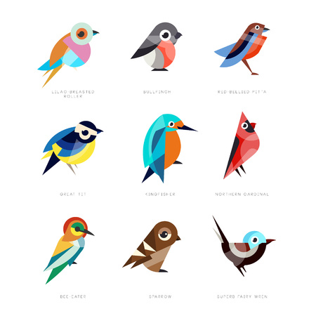 Different birds set, lilac breasted roller, bullfinch, red bellied pitta, great tit, kingfisher, northern cardinal, bee eater, sparrow, superb fairy wren vector Illustrations 矢量图像