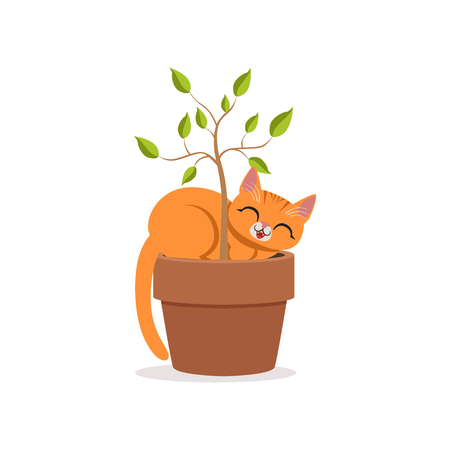 Cute funny red cat sleeping in a flower pot with a plant, home pet resting cartoon vector Illustration