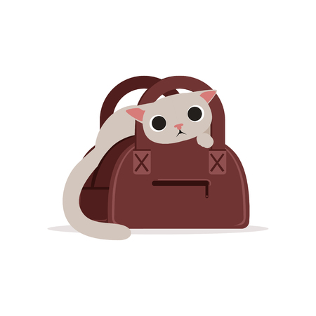 Lovely funny white cat in a brown bag, home pet playing and resting cartoon vector Illustration