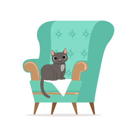 Cute gray cat sitting on a turquoise armchair, home pet resting vector Illustration