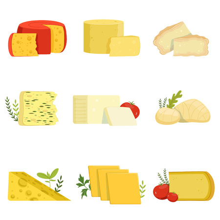 Different types of cheese pieces, popular kind of cheese vector Illustrations Фото со стока - 88470144