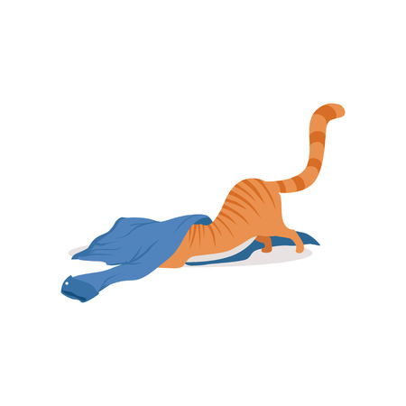 Cute funny red cat playing with blue shirt vector Illustration Illustration