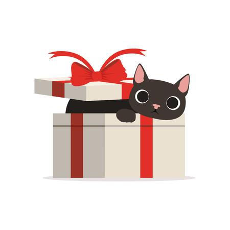 Lovely funny black cat in a gift box vector Illustration