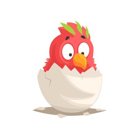 かわいい赤いオウムの赤ちゃんが卵から孵化