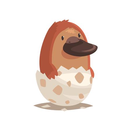 壊れた卵の殻でかわいい新生児カモノハシ