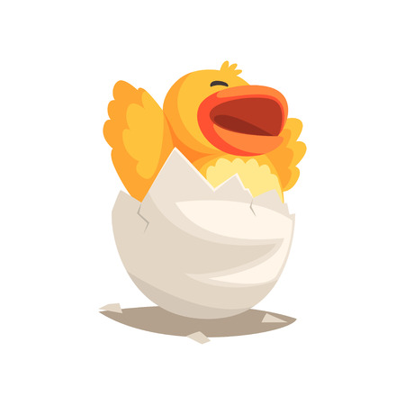 Happy yellow newborn duckling in broken egg shell. Baby animal hatching from egg. Little creature life. Flat cartoon tiny duck pet character birthday. Cute emoji vector illustration isolated on white.