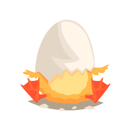 Funny newborn duckling with broken egg shell on the head. Baby nestling hatched from egg. Little creature life. Flat cartoon tiny duck character birthday. Emoji vector illustration isolated on white. Imagens - 88922638