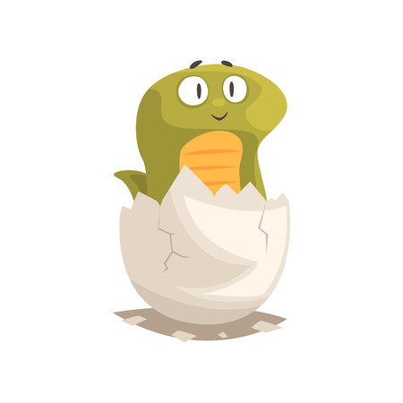 계란에서 귀여운 녹색 뱀 신생아 부화 스톡 콘텐츠 - 88928436