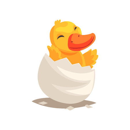 Cute duckling baby hatching from egg