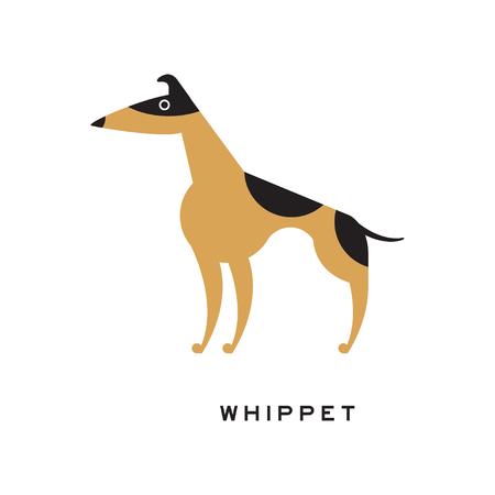 검은 색과 갈색 whippet 문자가 백인에 고립 된 일러스트