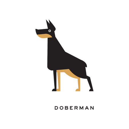Cartoon vector doberman standing in pose