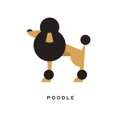Vector illustration of cartoon poodle character icon
