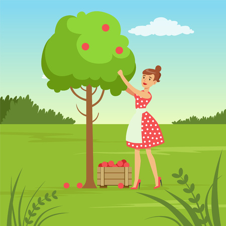 Flat woman character collecting the harvest vector illustration.