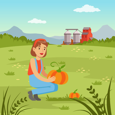 Farmer woman harvesting pumpkins in the field, agriculture and farming, rural landscape vector Illustration