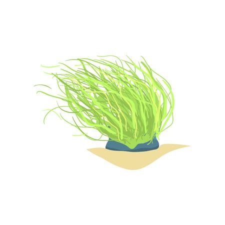 긴 녹색 바다 식물의 평면 그림입니다. 모래 바다 바닥에 산호입니다. 해양 식물상, 수중 세계 디자인