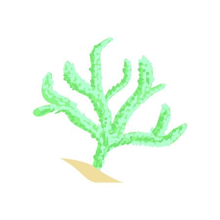 녹색 손가락 가죽 산호입니다. 수족관 무척추 동물. 열대 해역의 만화 공장 일러스트