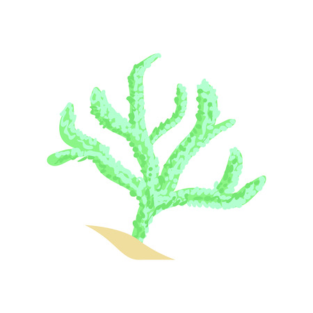 Green finger leather coral. Aquarium invertebrate animal. Cartoon plant of tropical waters Illustration