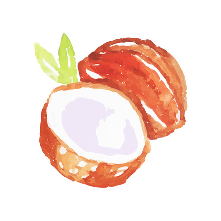 Juicy ripe coconut fruit watercolor hand painting vector Illustration