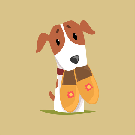 Jack russell puppy character with slippers in its mouth, cute funny terrier vector illustration