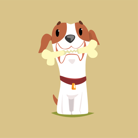 Jack russell puppy character with bone in its mouth, cute funny terrier vector illustration