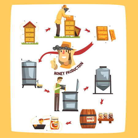 Honey production process stages, beekeepers harvesting honey and preserving in a jar cartoon vector Illustrations isolated on a white background