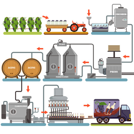 Wine production process, production beverage from grape flat vector Illustrations isolated on a white background
