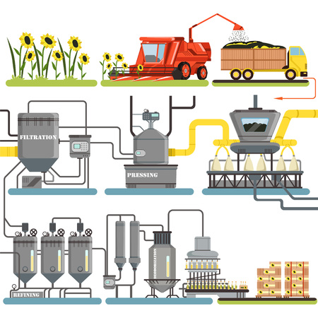 Sunflower oil production process stages, harvesting sunflowers and packing of finished products vector Illustrations isolated on a white background