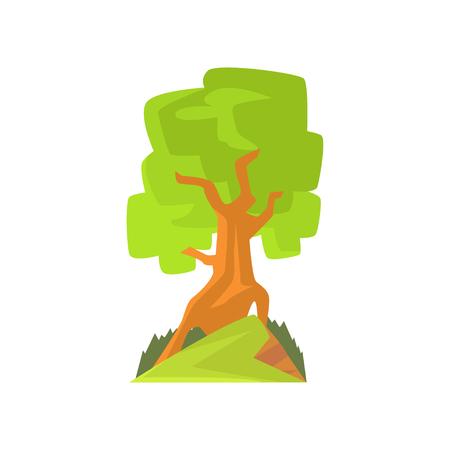Landschapsscène met bos of parkboom. Bladverliezende boom met groen blad. Hand getekend bos natuur ontwerpelement. Platte vector botanische illustratie