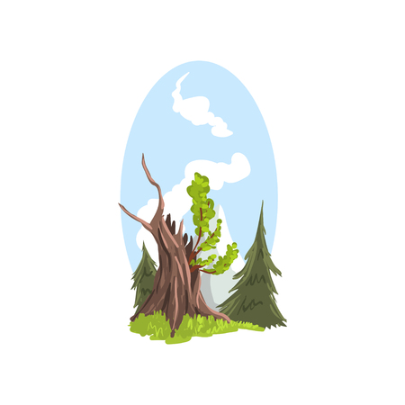 Hand drawn landscape young branches growing from old tree, firs behind. Coniferous and deciduous trees. Flat cartoon vector. Illustration