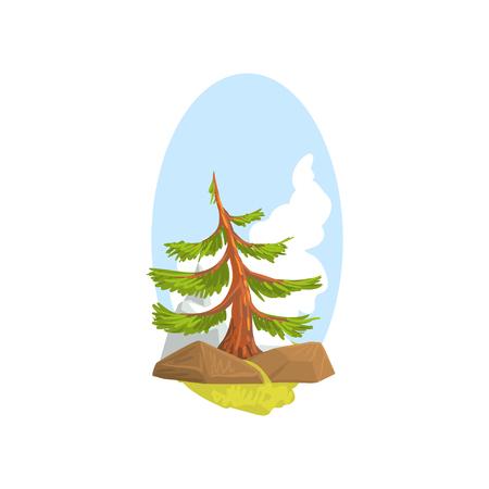 岩の後ろに成長する常緑松、青い空の背景と漫画の風景。カラフルな森の自然デザイン要素。フラット ベクトルイラストレーション。