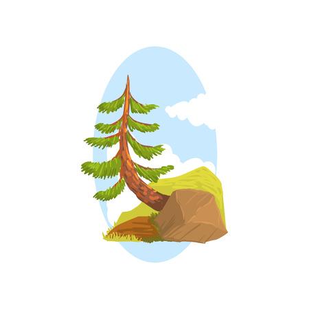 岩の後ろに生える常緑の松と手描きの風景シーン。コフィラスの木森の自然。フラット漫画ベクトル。