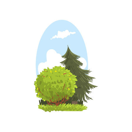 Detailed hand drawn landscape scene with evergreen fir and bush. Coniferous and deciduous trees. Woodland nature. Flat vector