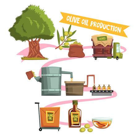 Process of olive oil production from cultivation to finished product illustration. Ilustração