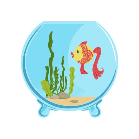 Round glass aquarium with golden fish.