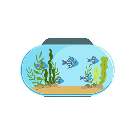 Aquarium in round shape with blue exotic fishes. Freshwater fish tank with seaweed and stones on sand. Underwater world. Colorful flat vector design