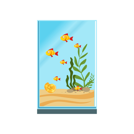 Exotic fishes in tall glass aquarium with sand, stones and different green algae. Tank with sea creatures. Underwater world. Colorful flat vector illustration