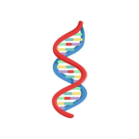 나선형 DNA. 유전 물질. 마이크로 및 분자 생물학. 플랫 스타일에서 다채로운 과학 아이콘입니다. 벡터 일러스트 레이 션 흰색 배경에 고립. 로고, 인포