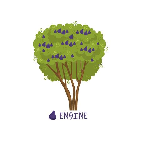 Figuier ou moteur arbre fruitier avec le nom du vecteur Illustration Banque d'images - 91471490