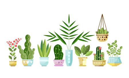 Satz bunte Houseplants der flachen Art in den Töpfen, die in der Linie stehen. Heimdekorative, exotische, laubgrüne und blühende Pflanzen. Vector Sammlung Innenblumen, Gestaltungselemente, die auf Weiß lokalisiert werden.