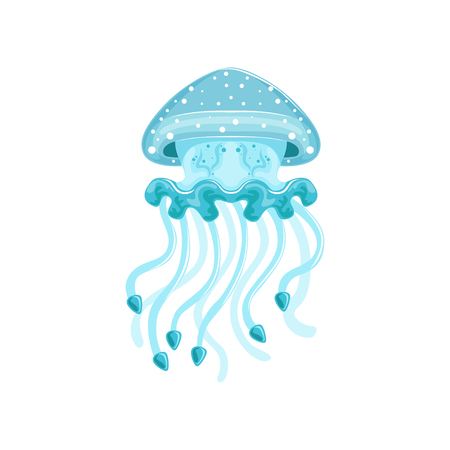 Light blue jellyfish, phyllorhiza punctata species of underwater life   vector Illustration on a white background