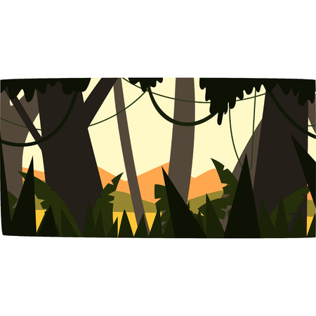 Sunrise in tropical jungle, greenwood background with leaves, bushes and trees, tropical forest scenery vector illustration, forest backdrop