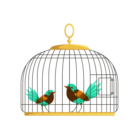 Couple of beautiful birds with colorful lush tails. Feathered creatures in vintage hanging cell. Vector illustration isolated on white. Simple flat style. Design for greeting card, poster or flyer.