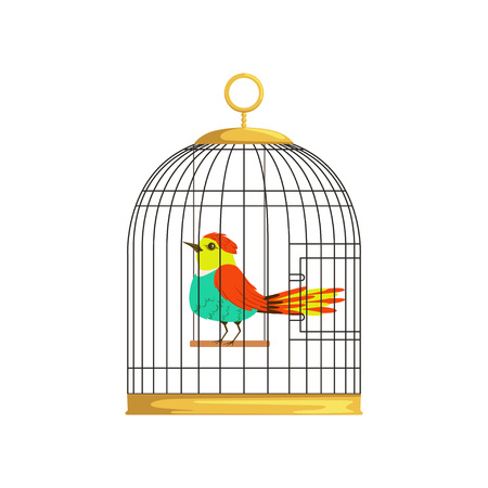 Beautiful character of colorful bird in cage. Wonderful feathered creature in hanging cell. Cartoon flat vector design for pet store poster or flyer. Illustration