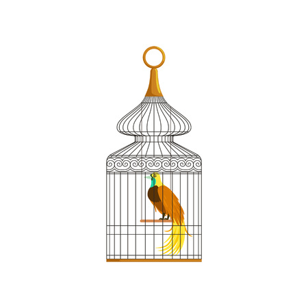 Colorful bird with long feathers sitting in antique metallic cage. Concept of domestic pet. Design element for infographic about keeping pets at home. Flat vector illustration isolated on white.