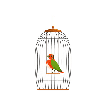 Elegant bird with colorful feathers sitting on horizontal bar in cage. Care of domestic animal. Flat vector design for pet store, postcard or label