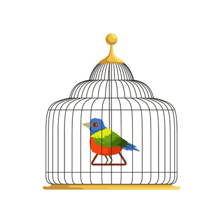 Colorful tropical bird sitting on triangle swing in antique hanging cage. Home for feathery creation. Flat vector design for infographic, website or poster Çizim