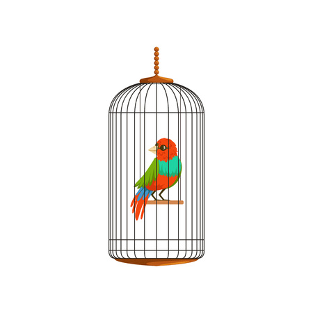 Creative illustration of little parrot in metal wire cage. Domestic bird with multi-colored feathers. Flat vector design for pet store, website or business flyer.